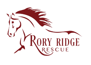 Rory Ridge Rescue
